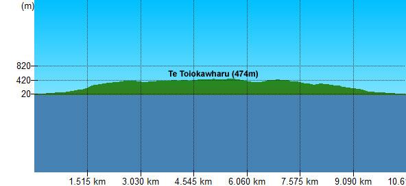 Te Toiokawharu-2d.jpg